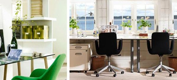 Đặt cây xanh trên bàn làm việc cần lưu ý gì? 3