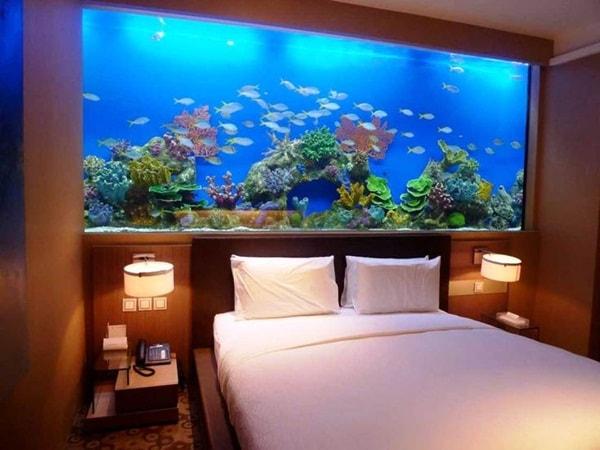 Không nên đặt bể cá trong phòng ngủ